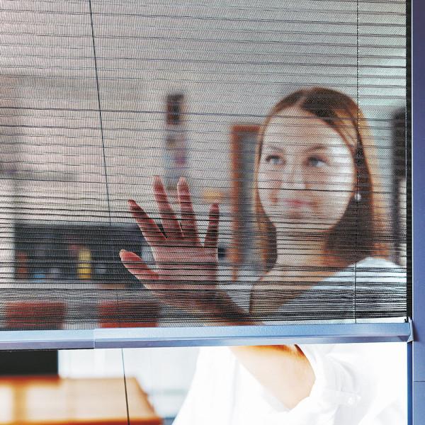 Insektenschutz-Plissee für Ihre Fenster